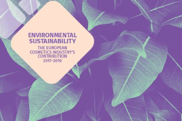 CE Environmental Sustainability Report 2019